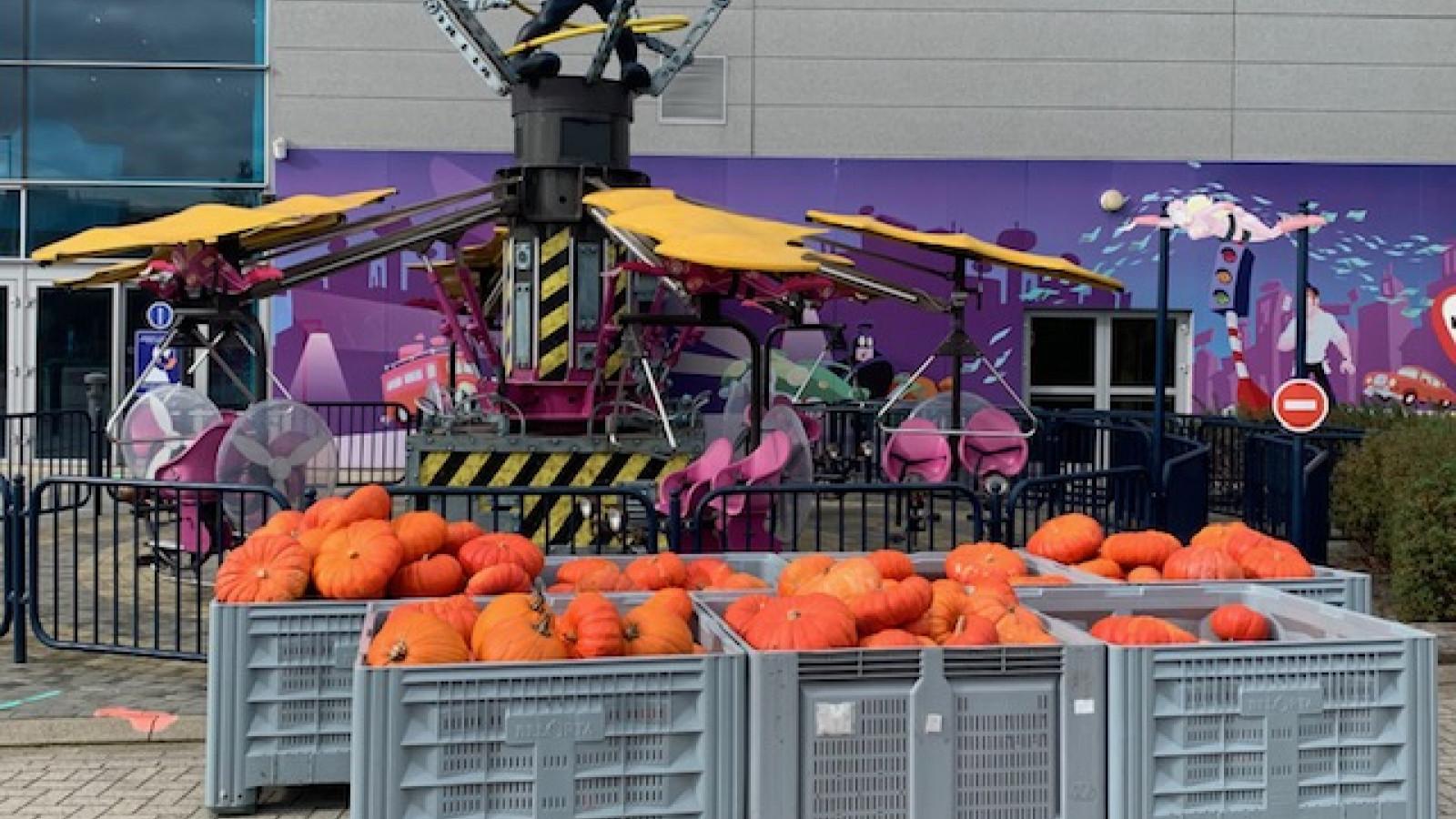 Plopsa Indoor Hasselt schenkt pompoenen aan Depot Margo