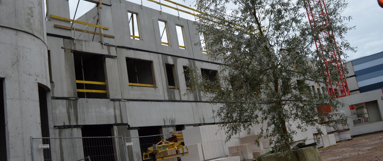 VIDEO: Meiboom op dak Plopsa Hotel ter afronding hoogste punt ruwbouwfase
